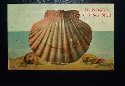 Vintage 12 View Pull Out Postcard (Oyster) Dunbar East Lothian 1914