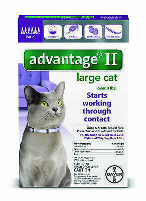 READ ABOUT FAKES 6Pk Bayer Advantage II Flea Control LARGE Cats 9+ lbs, 8+ WEEKS