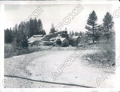 1959 Sierra Nevada CA Like Lots of Gold Mines this one is Deserted Press Photo
