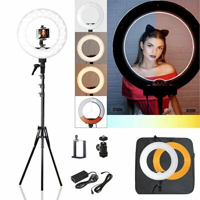 Photo Studio LED Ring Light 6200K Dimmable & Holder Lighting Kit Youtube Live US