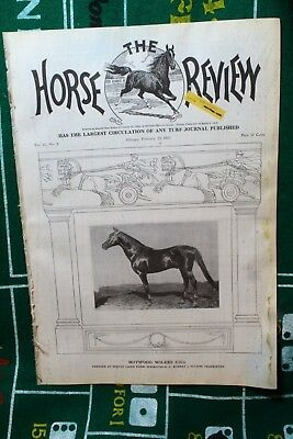 Feb. 23rd 1910 Horse Review Magazine Nutwood Wilkes 2:16 1/2 Vol. 41 No. 8