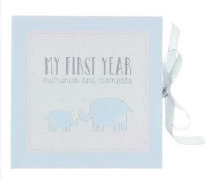 Baby Boy My First Year  Record Memory Book