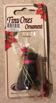 Newfoundland Ornament Mini Dog Tiny Ones by Conversation Concepts New