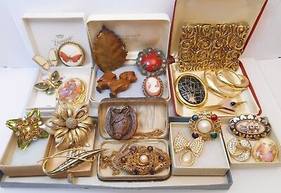 Job Lot Of Antique & Vintage Jewellery Brooches Necklace Horse Butterfly Etc