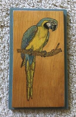 Vintage Hand Crafted Wood Burned And Painted Plaque- Macaw 1992