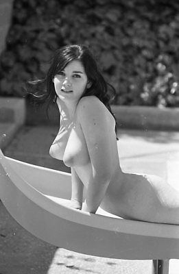 1960s Ron Vogel Negative, busty nude brunette pin-up girl Lana Rodgers, t216539