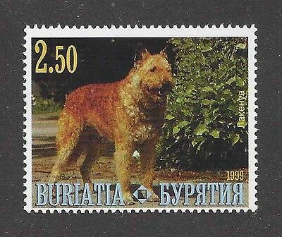 Dog Photo Body Study Postage Stamp BELGIAN SHEEPDOG LAEKENOIS Buriatia 1999 MNH