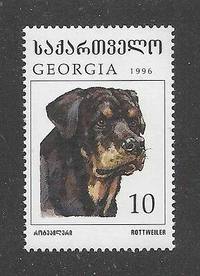 Dog Art Head Study Portrait Postage Stamp ROTTWEILER Georgia Russia 1996 MNH