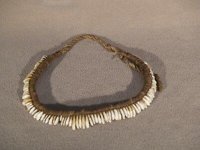 Vintage native american coyote and wolf claw choker circa 19th century