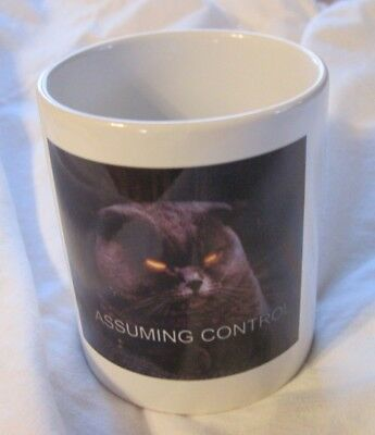 ASSUMING CONTROL Evil Cat Ceramic Coffee Mug EUC