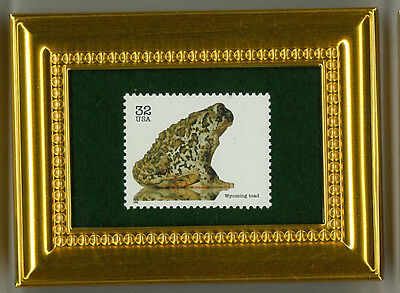 Wyoming Toad Amphibian Art Glass Framed Collectible Postage Masterpiece Gift