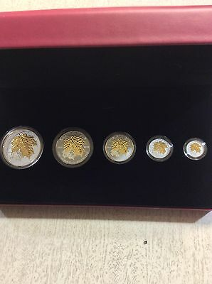 Canada - 2014 - The Maple Leaf Pure Silver Gold Plated Fractional Set .