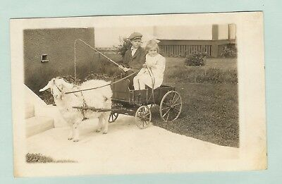 X-R/p-Postcard-Two Children In Goat Wagon -Pp-554