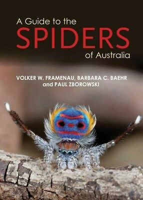 NEW A Guide to Spiders of Australia By Volker W Framenau Paperback Free Shipping