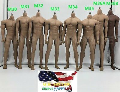 PHICEN TBLeague 1/6 scale Steel Skeleton Male MUSCULAR SEAMLESS FIGURE Body❶USA❶