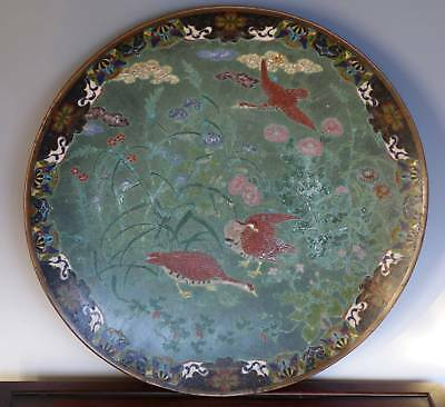 Large Fine Old Japanese Cloisonne Charger Platter With Ducks Flowers Superb