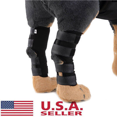 2Pc Pet Knee Support Brace Dog Hock Protector Therapeutic Heal Dogs Rear Leg USA