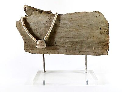 Beautiful Ancient Shell Necklace with Pendant Cheap LOOK