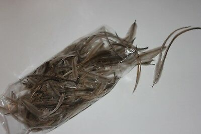 Ten (10x10 grm pack) - 100gm  natural body emu feathers for craft - millinery