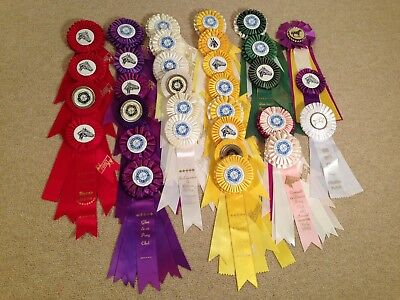 Lot of 30+ Vintage Horse Equestrian Show Ribbons Awards Rosettes