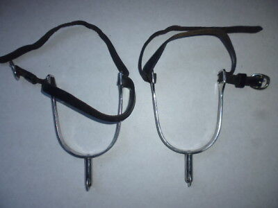 "Sprenger Ultra Fit Long Rowel Spurs and leather straps 1 1/4"" adults"