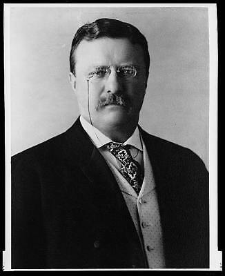 Photo:Theodore Roosevelt,President,Teddy,glasses,Pach Brothers,c1904