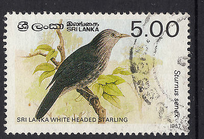 SRI LANKA 1987 5r Birds  Fine Used