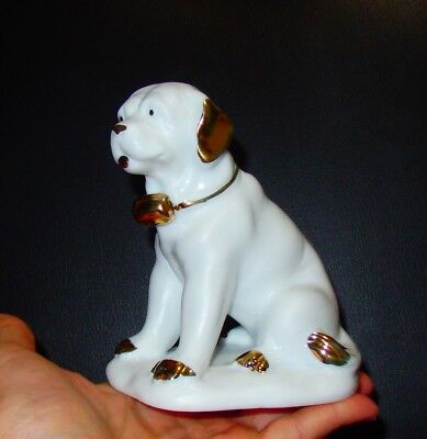 Dog Saint Bernard statue collection