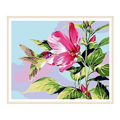 Frameless Flower Bird Painting DIY Digital Oil Paint By Numbers Wall Art Picture