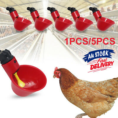 1pc/5pcs Water Feeder Drinker Automatic Cups Chicken Waterer Poultry Chook Bird