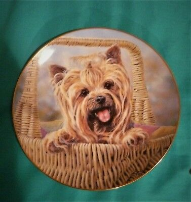DANBURY MINT YORKSHIRE TERRIER title CARRY ME HOME Collector PLATE Yorkie Dog