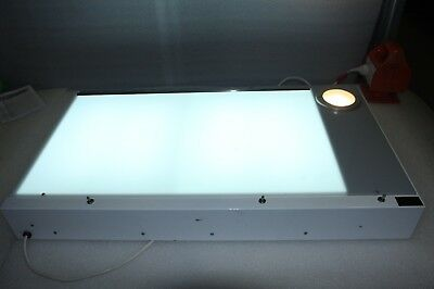 Rayvue Xray Film Viewer Medical Diagnostic Illuminator Light Panel - 81cm x 50cm