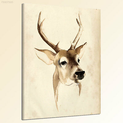 9DCE Creative Colorful Cartoon Animals Nordic Elk Decorated Frameless Oil Painti