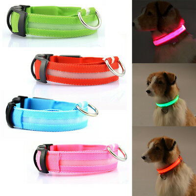 Rechargeable LED Lighted Pet Dog Collar Flashing Luminous Nylon with USB Cable