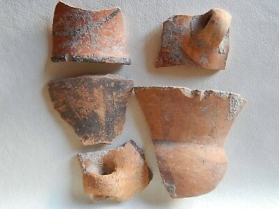 Neolithic Pottery Shards. Ukrainian finds. Trypillian culture.
