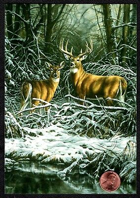Christmas Deer Antlers Meadow Snow Stream Branches - Christmas Greeting Card NEW