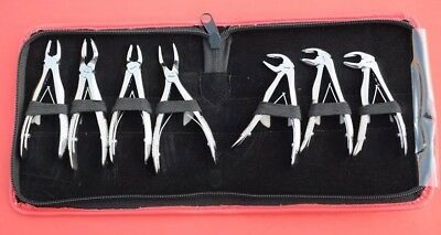 7 Pedo Extracting Forceps Dental Instruments Children With Pouch