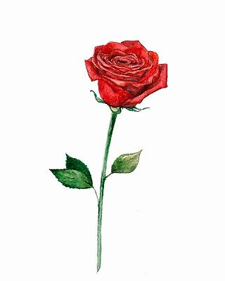 High Quality 9cm x 5cm Fake Tattoo Red Rose Drawing Waterproof Temporary Art