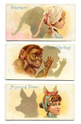 3@ 1800's Duke's Cigarettes Shadows Cards Elephant One Of The Boys Young Deer