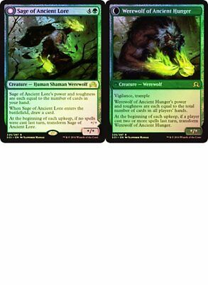 Sage of Ancient Lore / Werewolf of Ancient Hunger FOIL Shadows over Innistrad NM