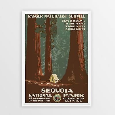 Sequoia National Park Vintage Travel Poster A4 A3 A5 Retro classic old