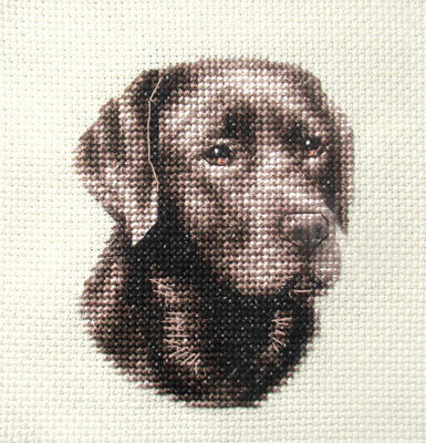 CHOCOLATE LABRADOR RETRIEVER dog, pup ~  Full counted cross stitch kit