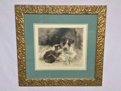 Wire Fox Terrier with Kitten - signed Eberhardt