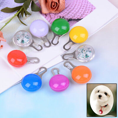 Fascinating Pet Dog Cat Puppy LED Flashing Collar Safety Night Light Pendant PDH