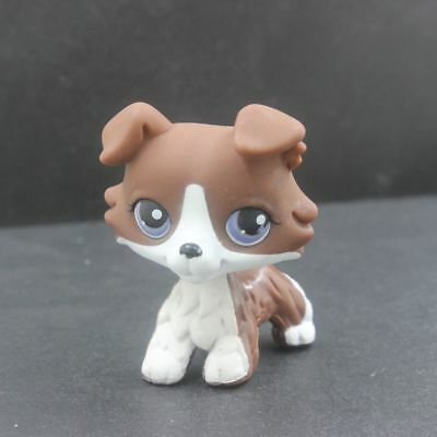 Littlest Pet Shop Brown Collie Dog Puppy LPS Collection Figure Rare Toys