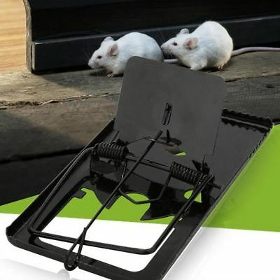 Black Reusable Mouse Mice Rat Trap Killer Control Trap-Easy Pest Catching Catche