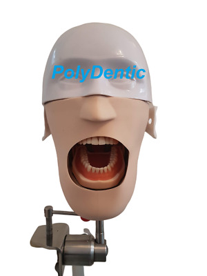 Dental Practice Simulator Manikin Practice Phantom head Dental Typodont