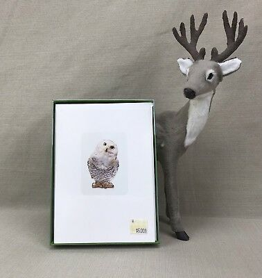 Hedwig SNOWY OWL 10 Blank Note Cards Vintage CR Gibson Creative Papers N856