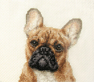 TAN FRENCH BULLDOG dog, puppy ~ Full counted cross stitch kit + every you need