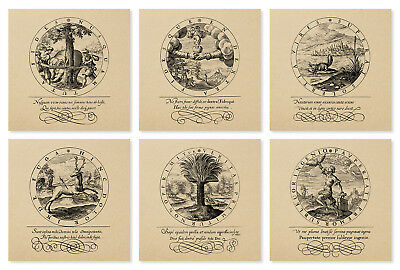 VINTAGE STYLE PRINTS-set of 6-Medieval Goth Old Alchemy Occult Cosmology Zodiac